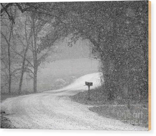 Neither Rain Nor Snow.. Wood Print
