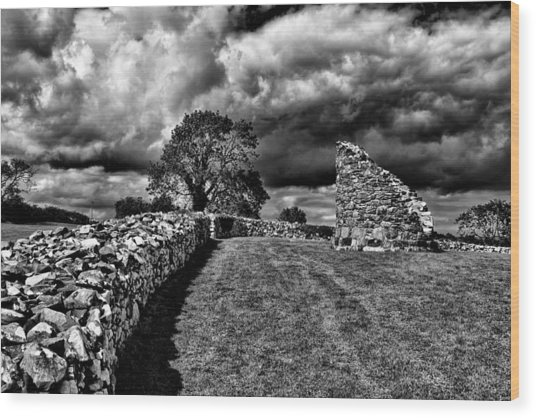 Nendrum Monastic Site Wood Print