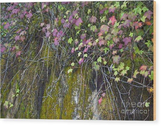 Neon Leaves No 1 Wood Print