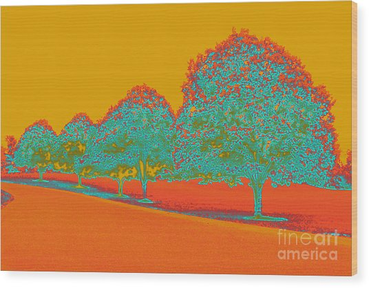 Neon Trees In The Fall Wood Print