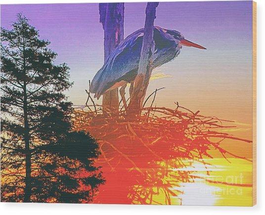 Nesting Heron - Summer Time Wood Print
