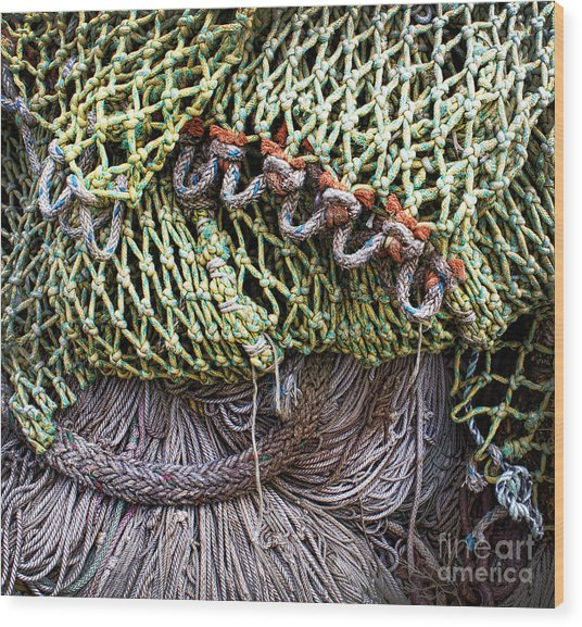 Nets And Knots Number Three Wood Print