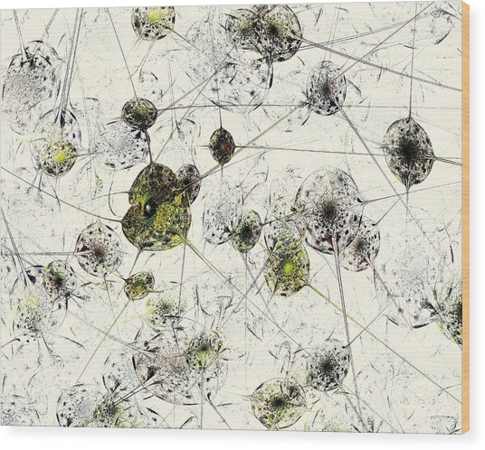 Neural Network Wood Print