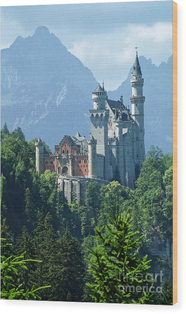 Neuschwanstein Castle 11 Wood Print