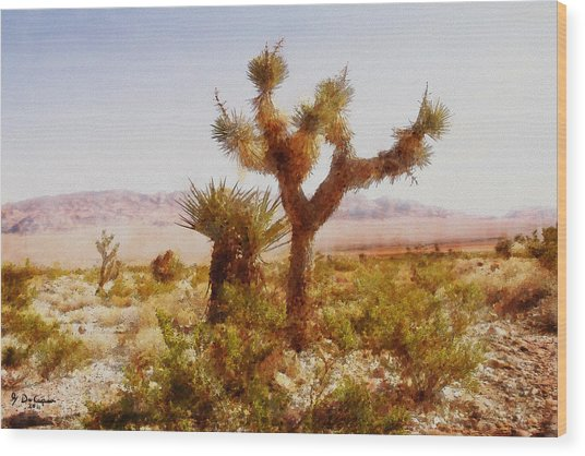 Nevada Desert Wood Print