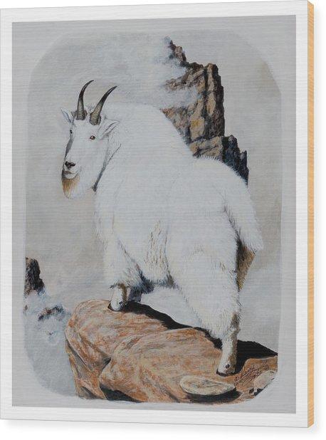Nevada Rocky Mountain Goat Wood Print