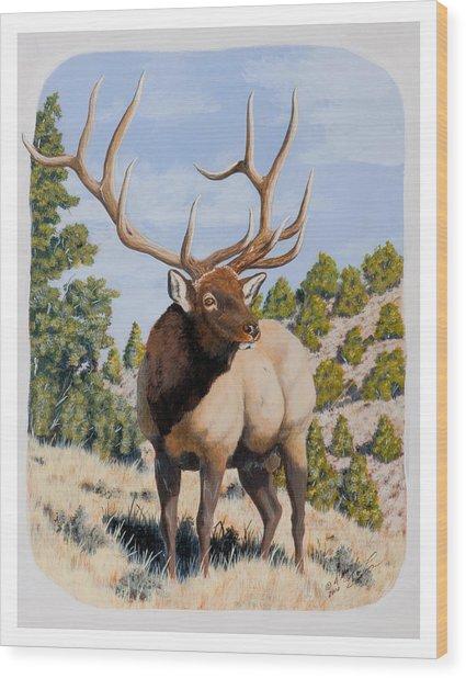 Nevada Typical Elk Wood Print