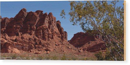 Nevada's Gem Wood Print by Wayne Vedvig