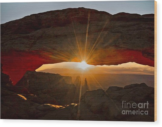Wood Print featuring the photograph New Day by Mae Wertz