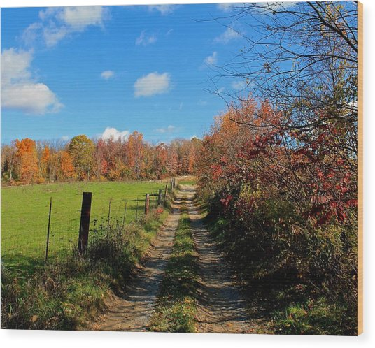 New England Farm Rota Springs Wood Print