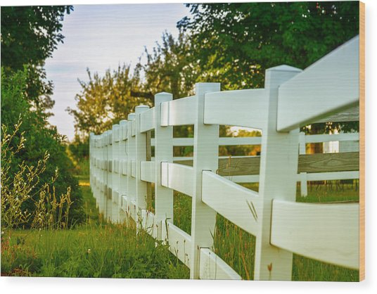 New England Fenceline Wood Print