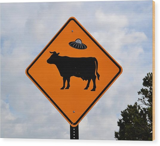New Mexico Crossing Wood Print