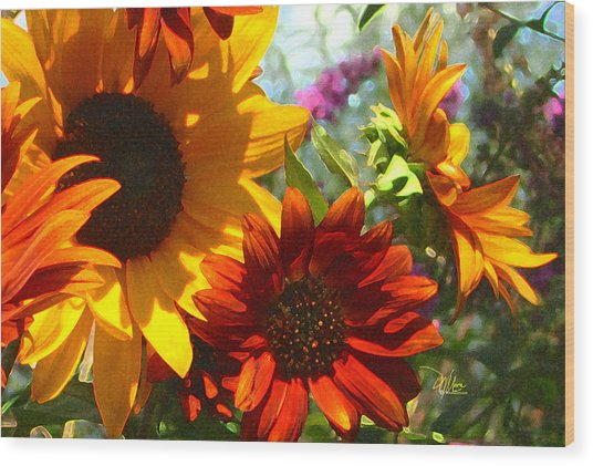 New Mexico Summer Sunflower Garden Wood Print
