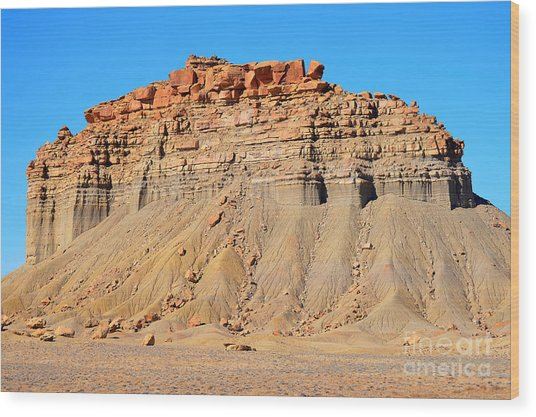 New Mexico Topography Wood Print