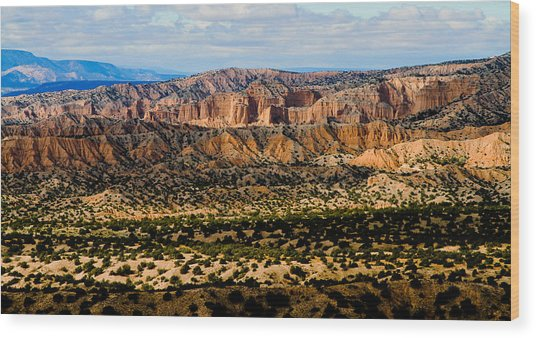 New Mexico View Wood Print
