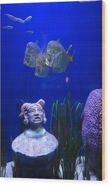 New Orleans Aquarium Wood Print