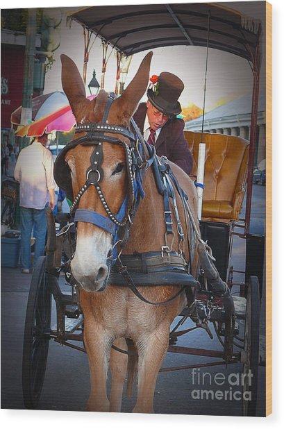New Orleans Mule Carraige Wood Print