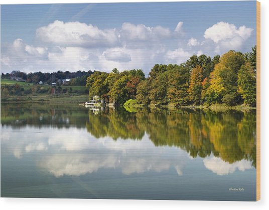 Wood Print featuring the photograph New York Cincinnatus Lake by Christina Rollo