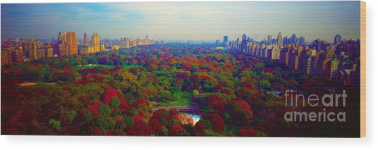 New York City Central Park South Wood Print