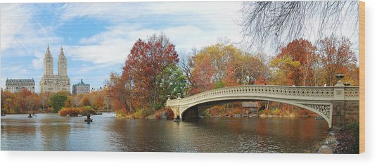 New York City Manhattan Central Park Panorama At Autumn Wood Print