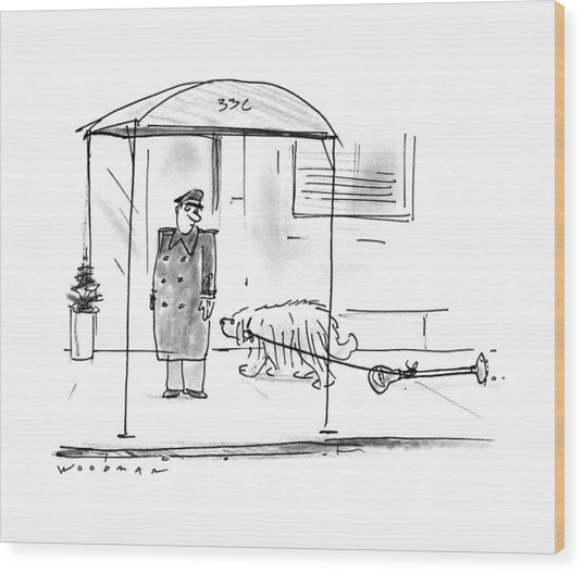 New Yorker February 13th, 1995 Wood Print