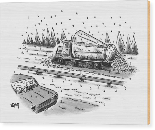 New Yorker February 22nd, 1999 Wood Print