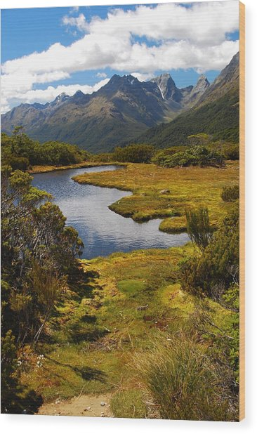 New Zealand Alpine Landscape Wood Print