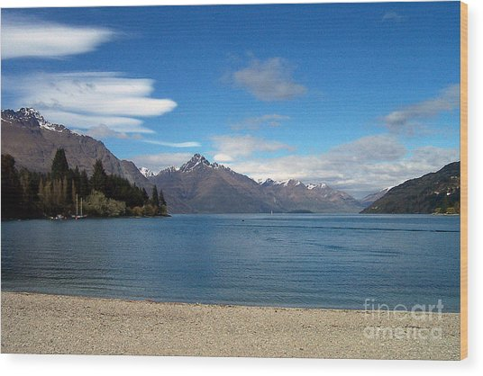 New Zealand Fjord Wood Print