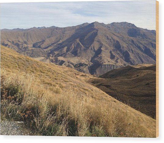 New Zealand Mountains Wood Print by Ron Torborg