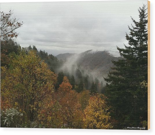 Newfound Gap Overlook Tennessee Wood Print