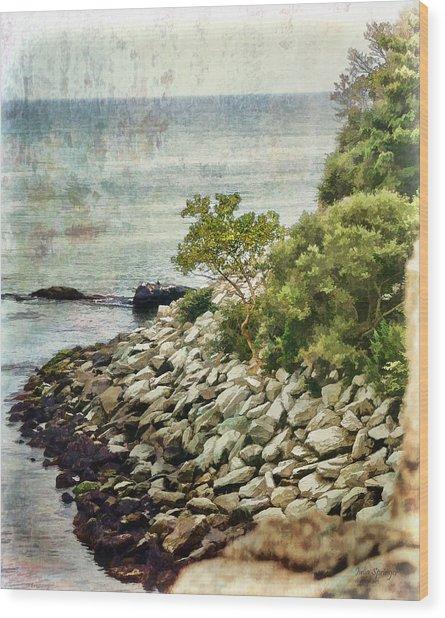 Newport Cliff Walk Wood Print