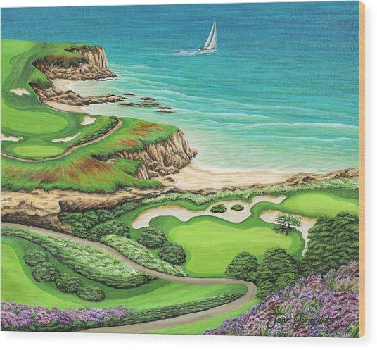 Newport Coast Wood Print
