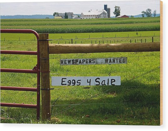 Newspapers Wanted Eggs 4 Sale Wood Print