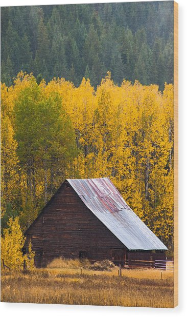 Next To Nature Wood Print