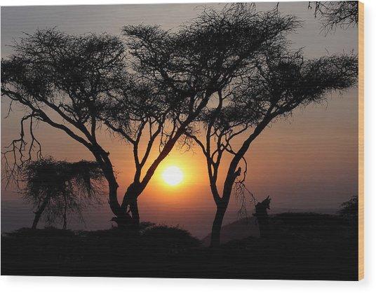 Ngorongoro Sunset II Wood Print
