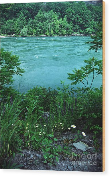 Niagara River Gorge  Wood Print
