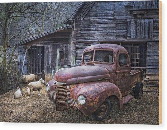 Nice Ride Wood Print