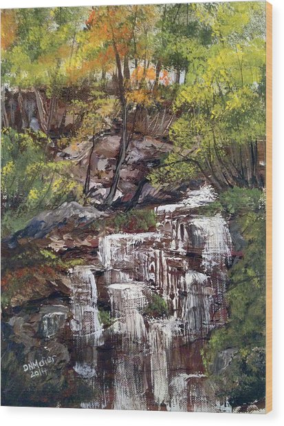 Nice Waterfall In The Forest Wood Print