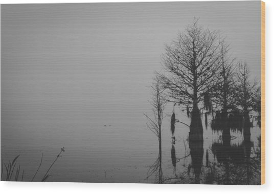 Niebla Wood Print by Michael Paul