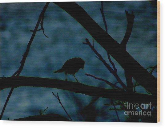 Night Bird Wood Print