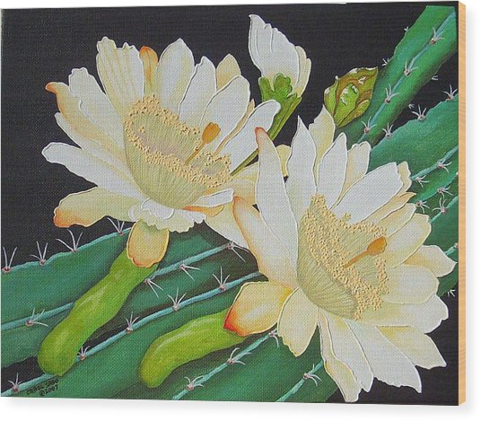 Night Blooming Cacti Wood Print by Carol Sabo