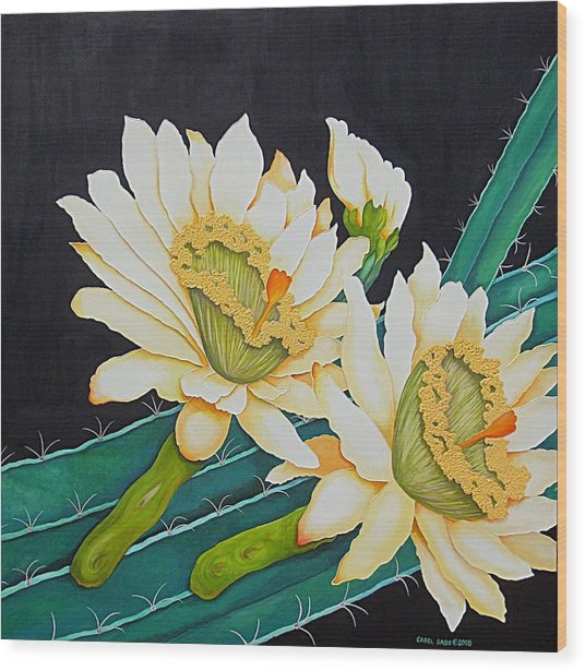Night Blooming Cactus Wood Print by Carol Sabo