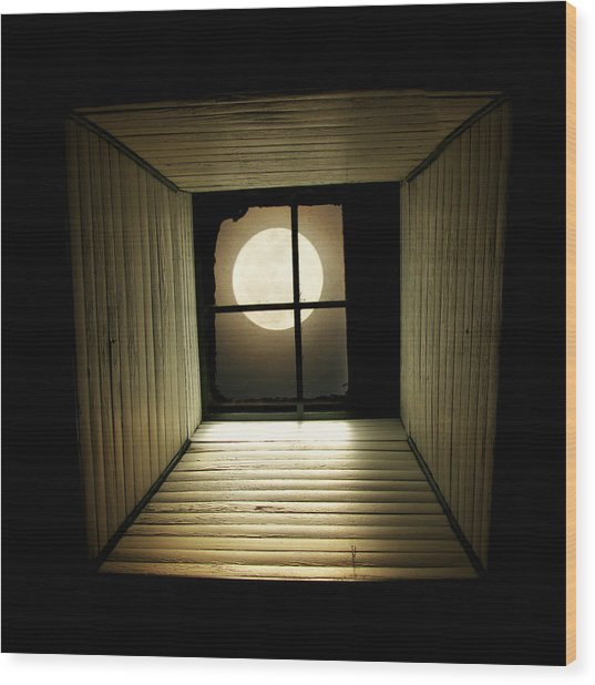 Night Light Wood Print