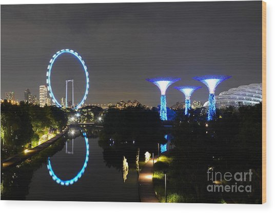 Night Shot Of Singapore Flyer Gardens By The Bay And Water Reflections Wood Print