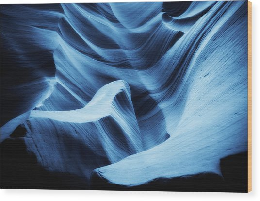 Nightswimming Wood Print by Roger Chenery