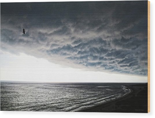 No Fear - Beach Art By Sharon Cummings Wood Print