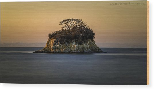 No Man Is An Island Wood Print