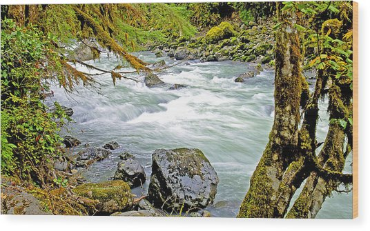 Nooksack River Rapids Washington State Wood Print
