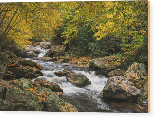 North Carolina Highlands Nc Autumn River Gorge Wood Print