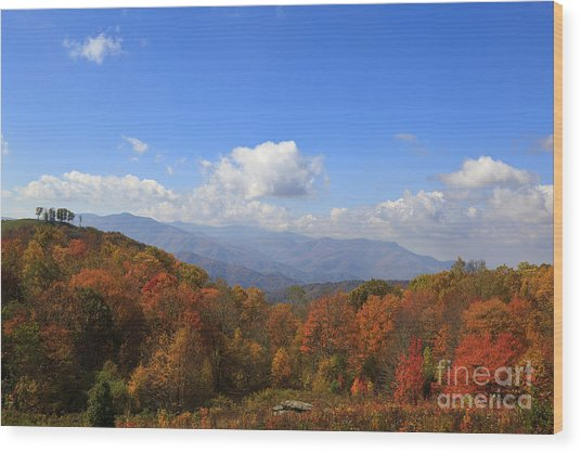 North Carolina Mountains In The Fall Wood Print